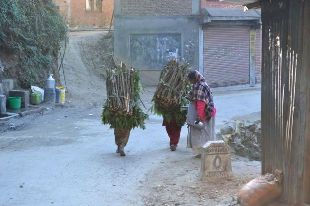 women carrying sticks